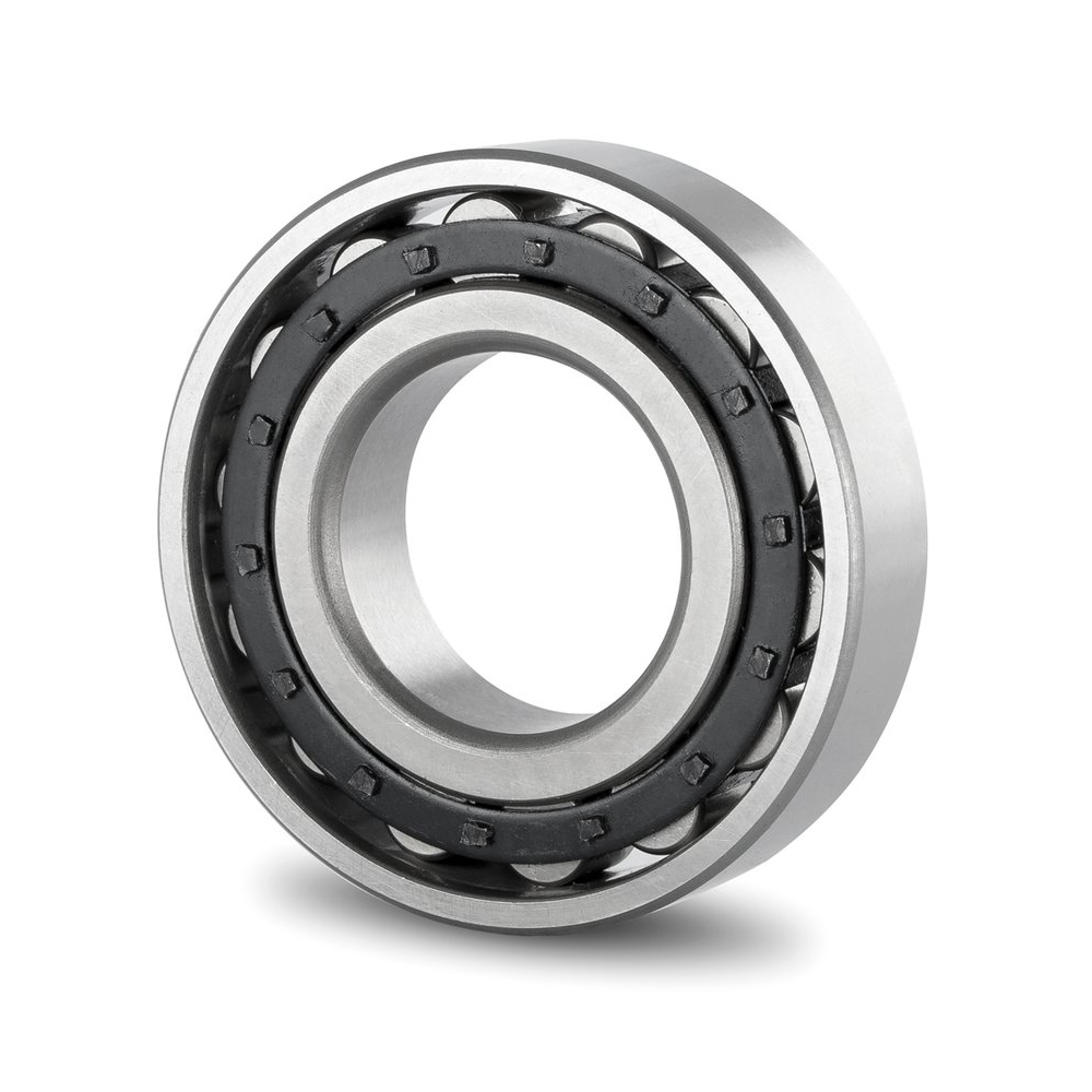 Short Cylindrical Roller Bearings